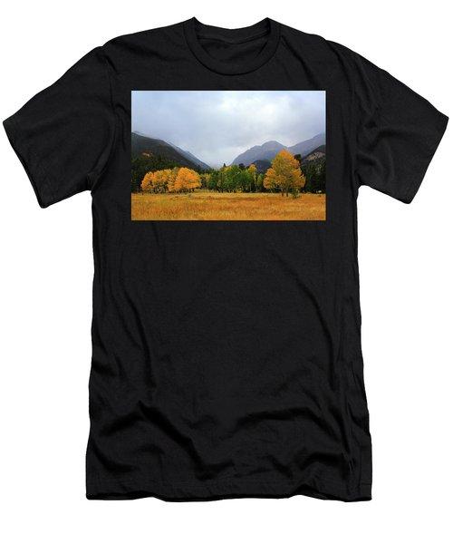 Autumn Valley Men's T-Shirt (Athletic Fit)