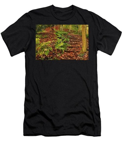 Autumn Woodland Path Men's T-Shirt (Athletic Fit)
