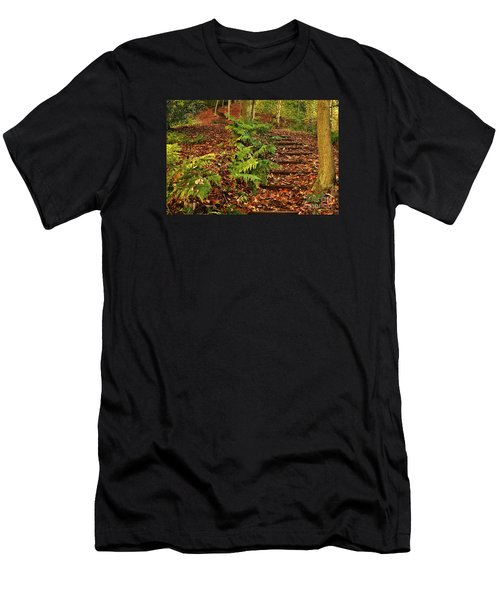 Autumn Woodland Path Men's T-Shirt (Athletic Fit)
