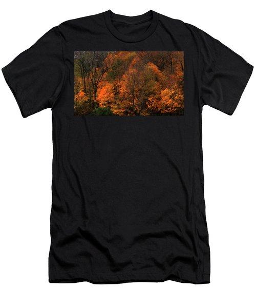 Autumn Woods Men's T-Shirt (Athletic Fit)