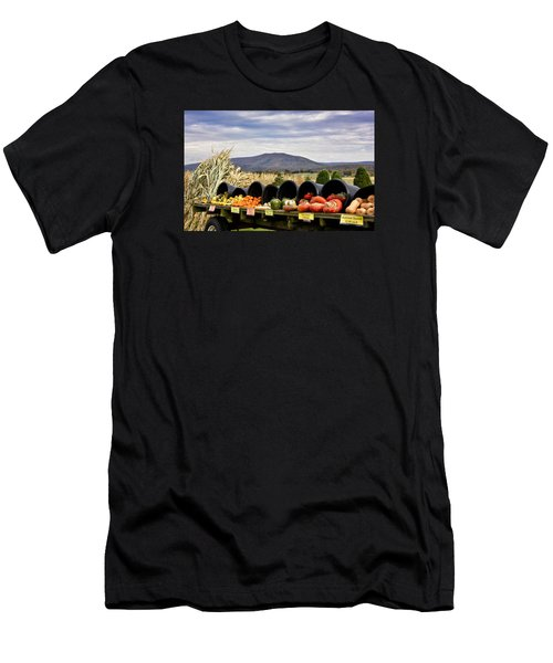 Autumnal Abundance In The Blue Ridge Mountains - Virginia Men's T-Shirt (Slim Fit) by Brendan Reals