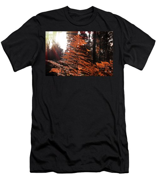 Autumnal Evening Men's T-Shirt (Athletic Fit)