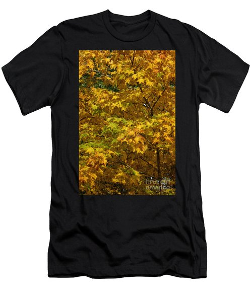Autumnal Leaves And Trees 2 Men's T-Shirt (Athletic Fit)