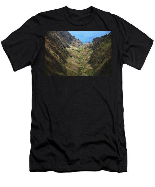 Awaawapuhi Valley Men's T-Shirt (Athletic Fit)