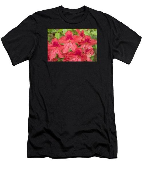 Azalea Blossoms Men's T-Shirt (Athletic Fit)