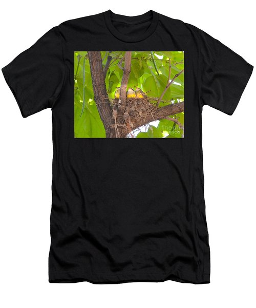 Baby Birds Waiting For Mom Men's T-Shirt (Athletic Fit)
