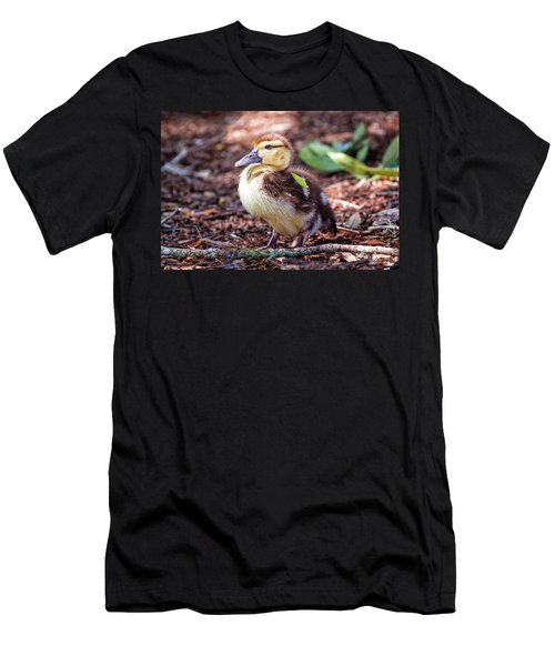 Baby Duck Sitting Men's T-Shirt (Athletic Fit)