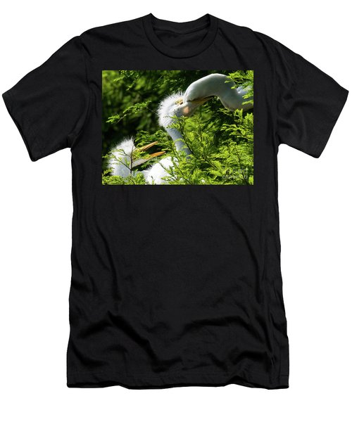 Baby Egrets Being Feed Men's T-Shirt (Athletic Fit)