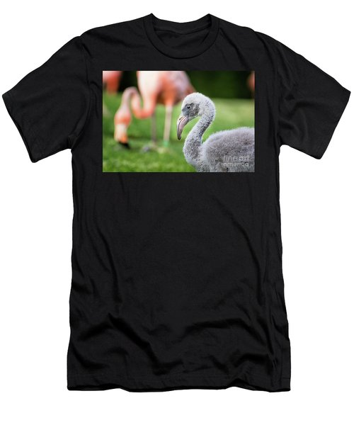 Baby Flamingo With Mom In Background Men's T-Shirt (Athletic Fit)