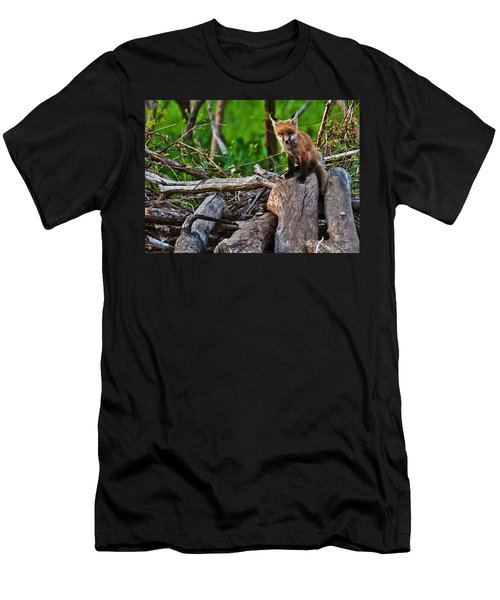 Baby Fox Men's T-Shirt (Athletic Fit)