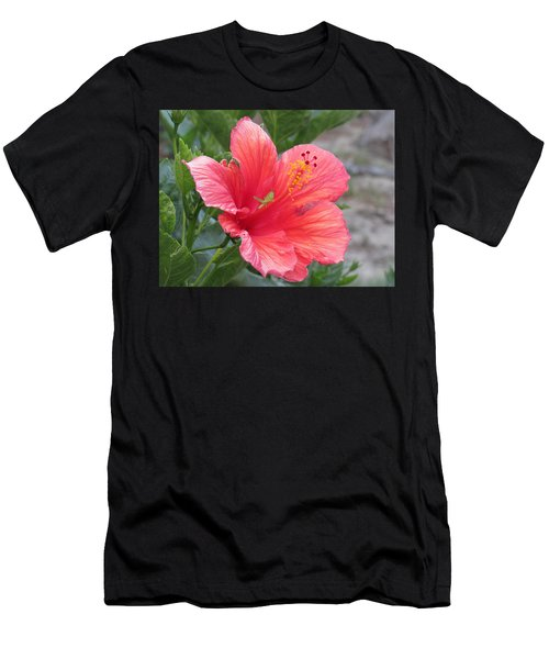 Men's T-Shirt (Athletic Fit) featuring the photograph Baby Grasshopper On Hibiscus Flower by Nancy Nale