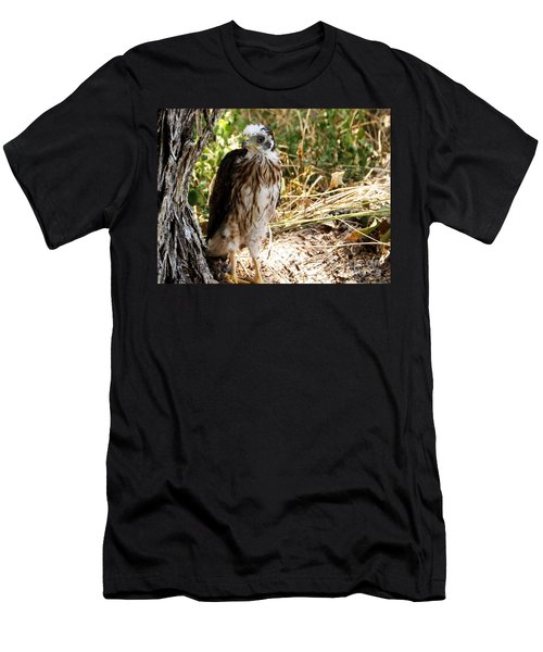 Baby Hawk Fell Out Of Nest Men's T-Shirt (Athletic Fit)