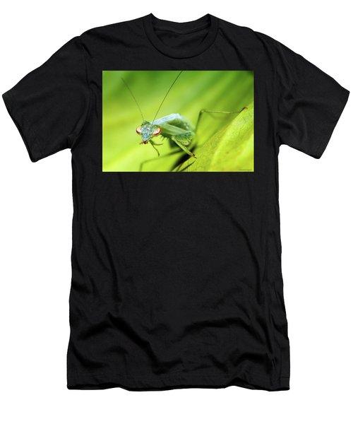 Baby Praymantes 6677 Men's T-Shirt (Athletic Fit)