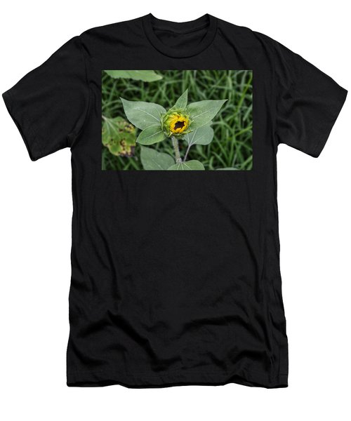 Baby Sunflower  Men's T-Shirt (Athletic Fit)