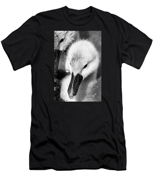 Baby Swan Headshot Men's T-Shirt (Athletic Fit)