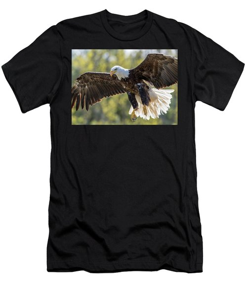 Backlit Eagle Men's T-Shirt (Athletic Fit)