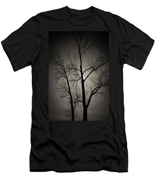 Backlit Trees Men's T-Shirt (Athletic Fit)
