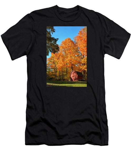 Backyard Beauty Men's T-Shirt (Slim Fit) by Nikki McInnes