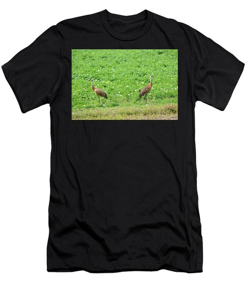 Balance And Majesty Men's T-Shirt (Athletic Fit)