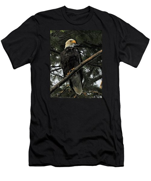 Men's T-Shirt (Slim Fit) featuring the photograph Bald Eagle by Glenn Gordon