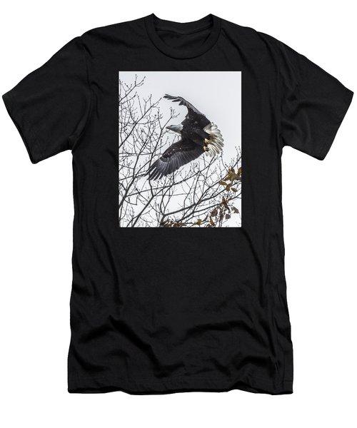 Bald Eagle Flying Men's T-Shirt (Athletic Fit)
