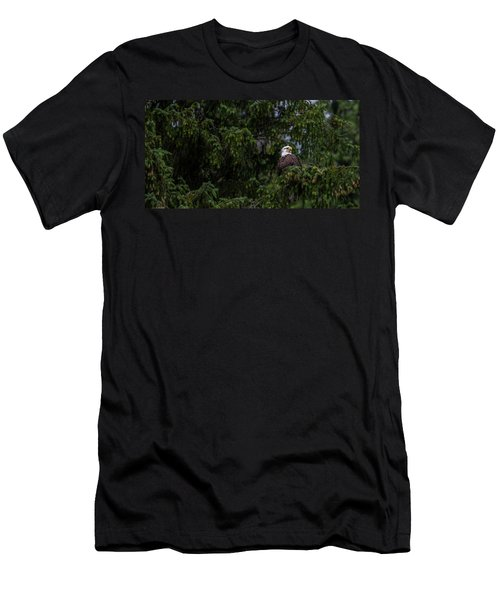 Bald Eagle In The Tree Men's T-Shirt (Athletic Fit)