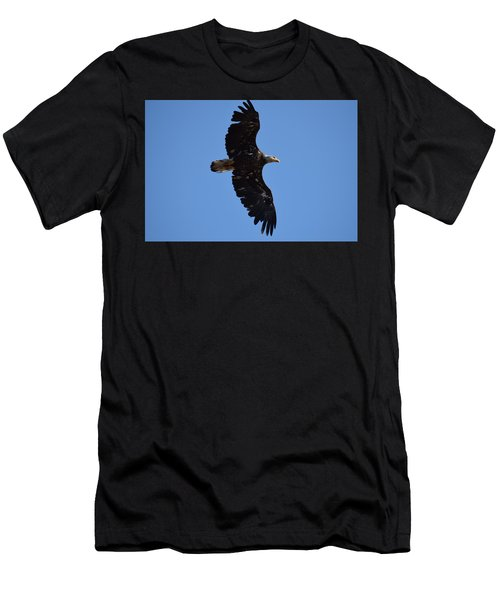 Men's T-Shirt (Athletic Fit) featuring the photograph Bald Eagle Juvenile Soaring by Margarethe Binkley