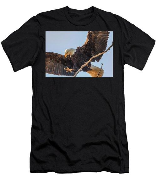 Bald Eagle Landing Men's T-Shirt (Athletic Fit)
