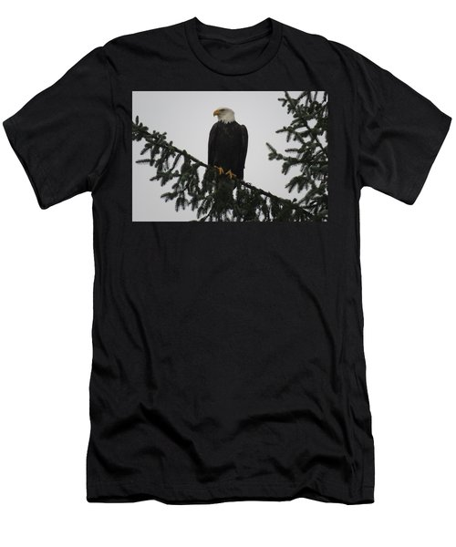 Bald Eagle Watching Men's T-Shirt (Athletic Fit)