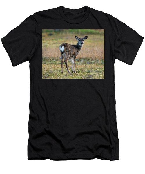 Bambi Men's T-Shirt (Athletic Fit)