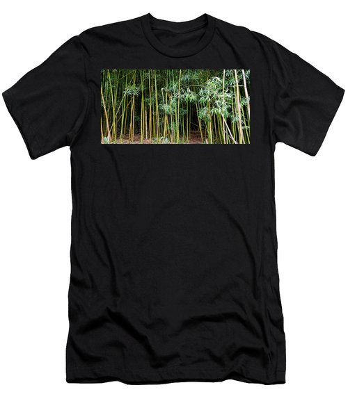 Bamboo Wind Chimes  Waimoku Falls Trail  Hana  Maui Hawaii Men's T-Shirt (Athletic Fit)