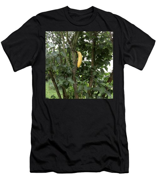 Banana Tree  Men's T-Shirt (Athletic Fit)