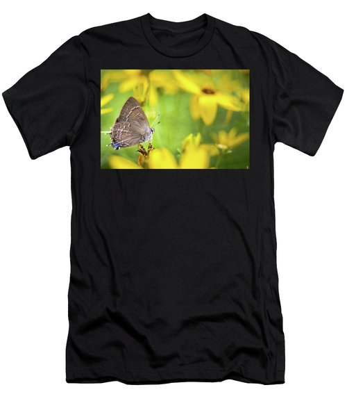 Banded Hairstreak On Coreopsis Men's T-Shirt (Athletic Fit)