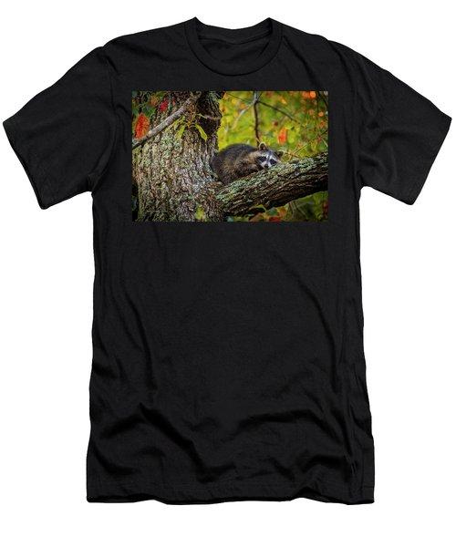 Bandit #2 Nap Time Men's T-Shirt (Athletic Fit)