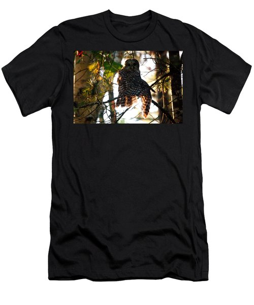 Barred Owl At Sunrise Men's T-Shirt (Athletic Fit)