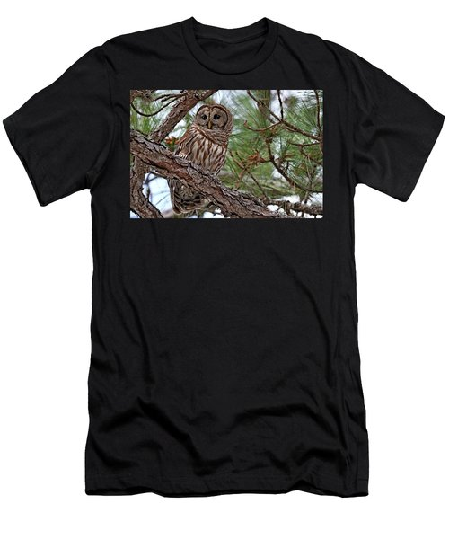 Barred Owl Perched In Tree Men's T-Shirt (Slim Fit)