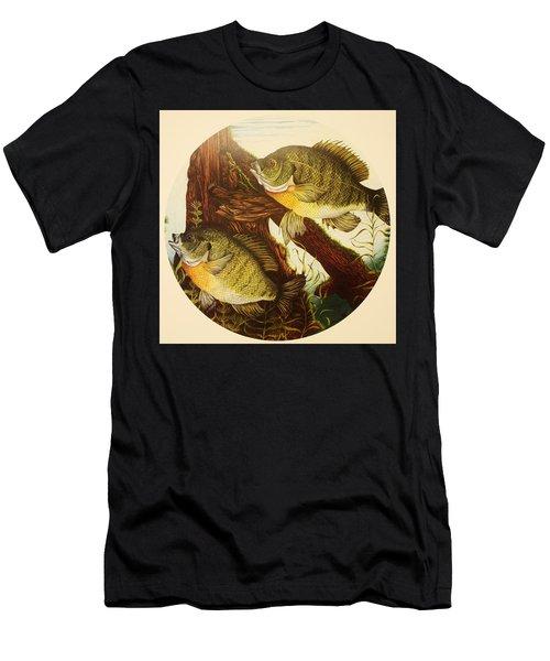 Basking Bluegills Men's T-Shirt (Athletic Fit)
