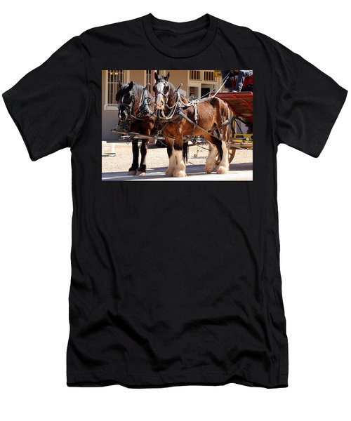 Bay Colored Clydesdale Horses Men's T-Shirt (Athletic Fit)