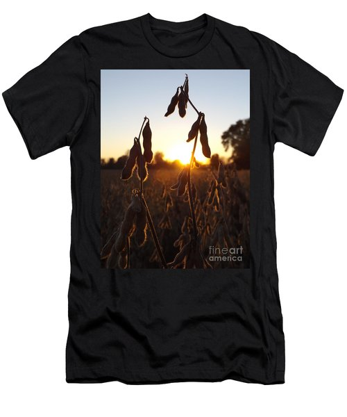 Beans At Sunset Men's T-Shirt (Athletic Fit)