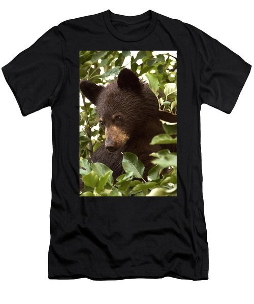 Bear Cub In Apple Tree2 Men's T-Shirt (Athletic Fit)