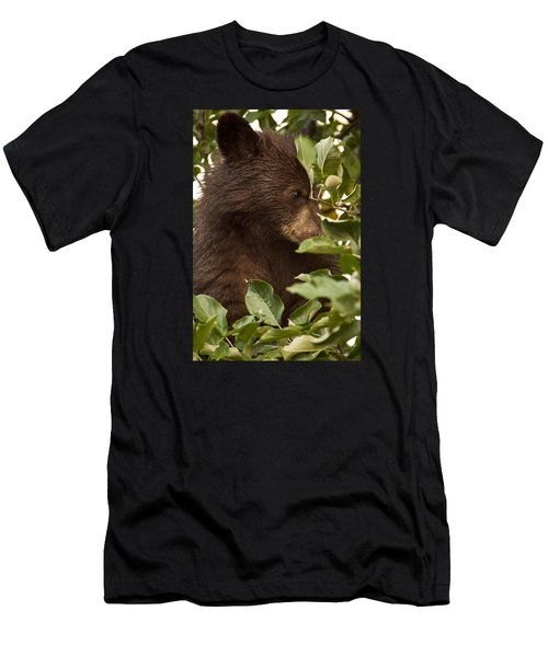 Bear Cub In Apple Tree3 Men's T-Shirt (Athletic Fit)