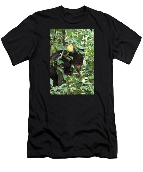 Bear Cub In Apple Tree5 Men's T-Shirt (Athletic Fit)