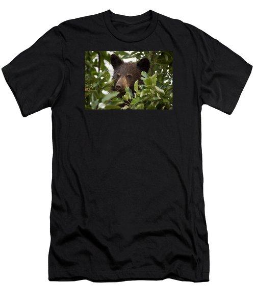 Bear Cub In Apple Tree6 Men's T-Shirt (Athletic Fit)