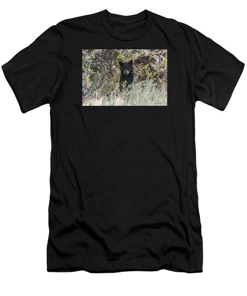 Bear Cub Looking For Mom Men's T-Shirt (Athletic Fit)