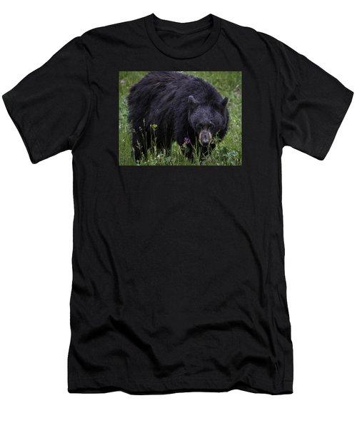 Bear Gaze Men's T-Shirt (Athletic Fit)