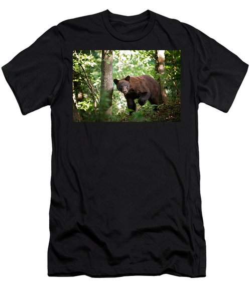 Bear In The Woods Men's T-Shirt (Athletic Fit)