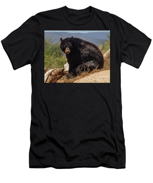 Bear Men's T-Shirt (Athletic Fit)