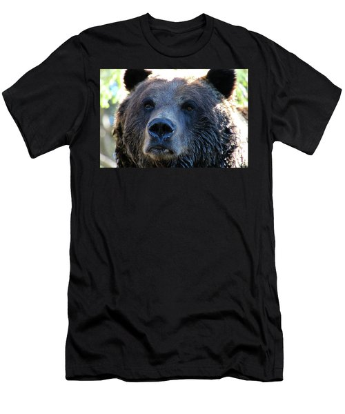 Bear On Grouse Men's T-Shirt (Athletic Fit)