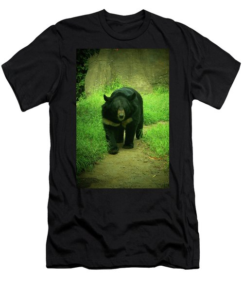 Bear On The Prowl Men's T-Shirt (Athletic Fit)