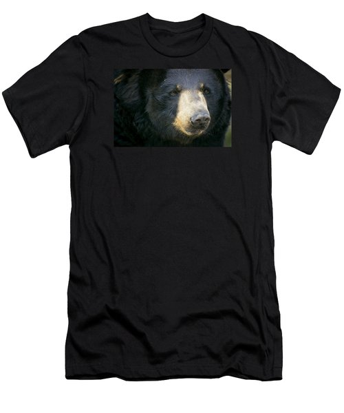 Men's T-Shirt (Slim Fit) featuring the photograph Bear With Me by Cheri McEachin